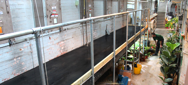 Anti-slip floor sheets and stair nosing installed at London Zoo reptile house.